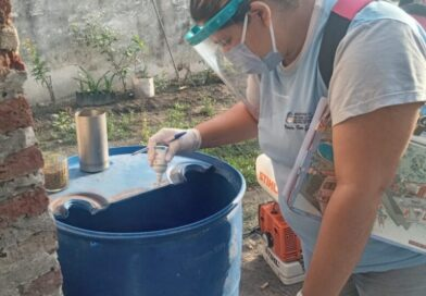 Dengue: Lo que debemos hacer para evitar la enfermedad