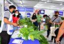 Productores Paipperos dispusieron más de nueve mil toneladas de alimentos para las tres jornadas de Soberanía Alimentaria Formoseña
